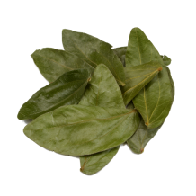 Bobinsana Leaves