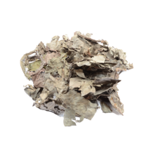 Psychotria carthagenensis (Amyruca) 25 grams dried leaves